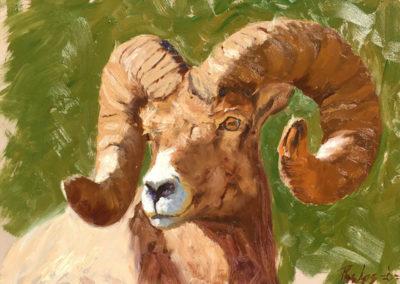 Dubois Ram